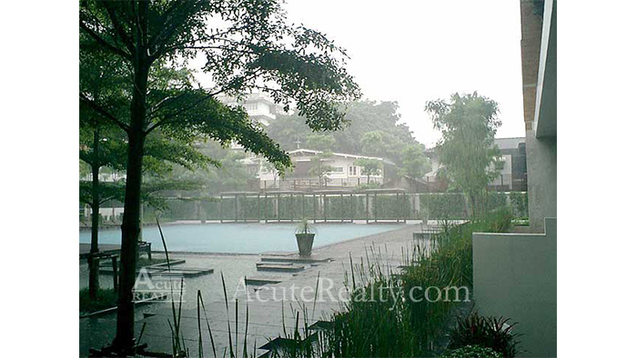 Condominium  for sale & for rent Ficus Lane Prakanong image24