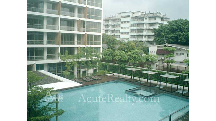 Condominium  for sale & for rent Ficus Lane Prakanong image25
