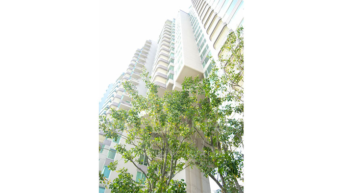 Condominium  for sale WaterMark Chaophraya Charoen Nakorn image13