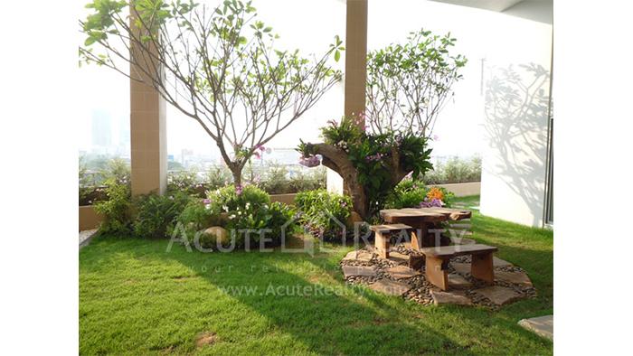 Condominium  for sale My Resort Bangkok Petchburi road image21