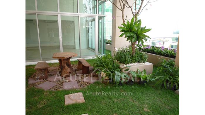 Condominium  for sale My Resort Bangkok Petchburi road image23