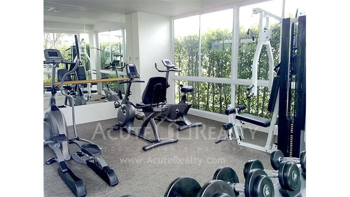 Condominium  for sale & for rent Siri on 8 Sukhumvit soi8 image17