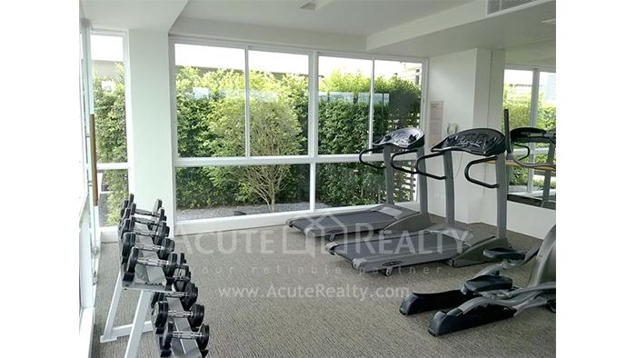 Condominium  for sale & for rent Siri on 8 Sukhumvit soi8 image18