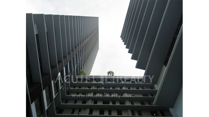 公寓  for sale & for rent Amanta Lumpini Rama 4 image8