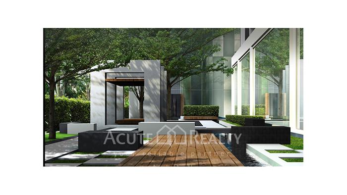 Condominium  for sale Ideo Bluecove Sukhumvit Sukhumvit 103 image14