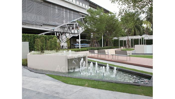 公寓  for sale & for rent Ideo Verve Sukhumvit Sukhumvit (On Nut) image4