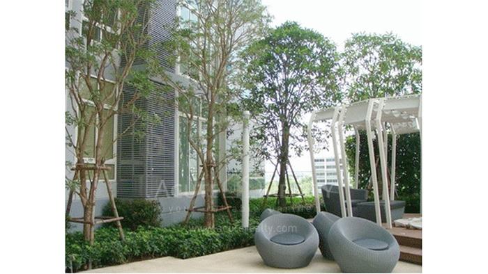 公寓  for sale & for rent Ideo Verve Sukhumvit Sukhumvit (On Nut) image6