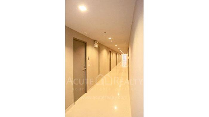 公寓  for sale & for rent Ideo Verve Sukhumvit Sukhumvit (On Nut) image13
