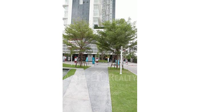 公寓  for sale & for rent Ideo Verve Sukhumvit Sukhumvit (On Nut) image15