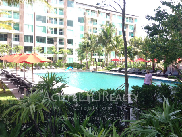 Condominium  for sale & for rent Amari Residences Hua Hin Hua Hin image19