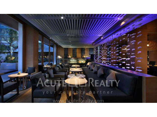 Condominium  for sale & for rent Amari Residences Hua Hin Hua Hin image26