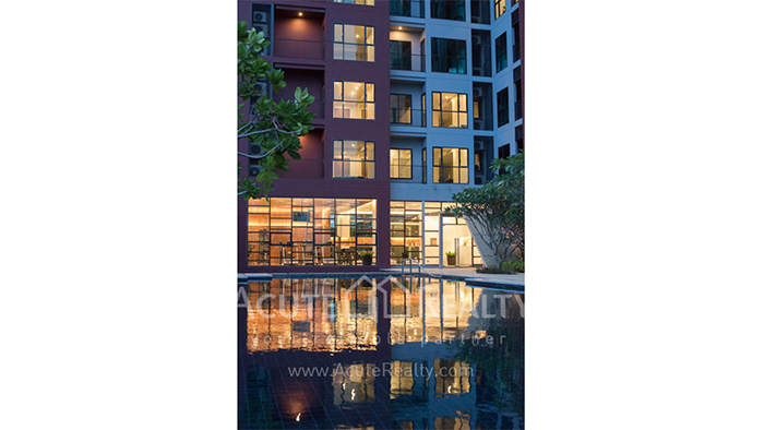 Condominium  for sale WYNE Sukhumvit สุขุมวิท 77 image14