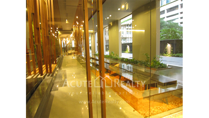 Condominium  for sale & for rent HYDE Sukhumvit Sukhumvit 13 image25