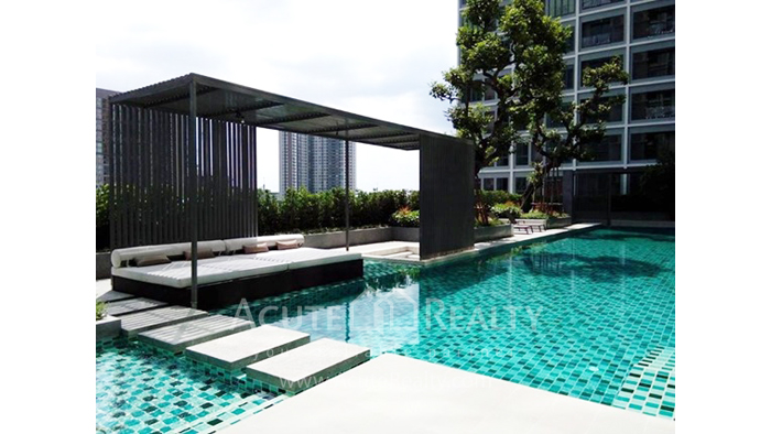 Condominium  for sale & for rent Ideo Wutthakad Ratchada-Thapha Rd. image11