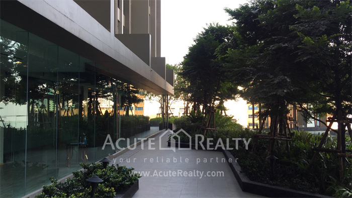 Condominium  for sale & for rent Niche Pride Thonglor- Phetchaburi Thonglor-Petchaburi image38