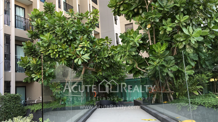 Condominium  for rent Niche Pride Thonglor- Phetchaburi Phetburi-Thonglor image40