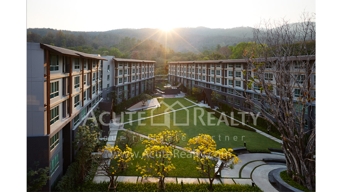 Condominium  for sale & for rent Dcondo Campus Resort Suthep image9