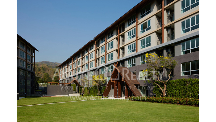 Condominium  for sale Dcondo Campus Resort Suthep, Muang, Chiang Mai image13