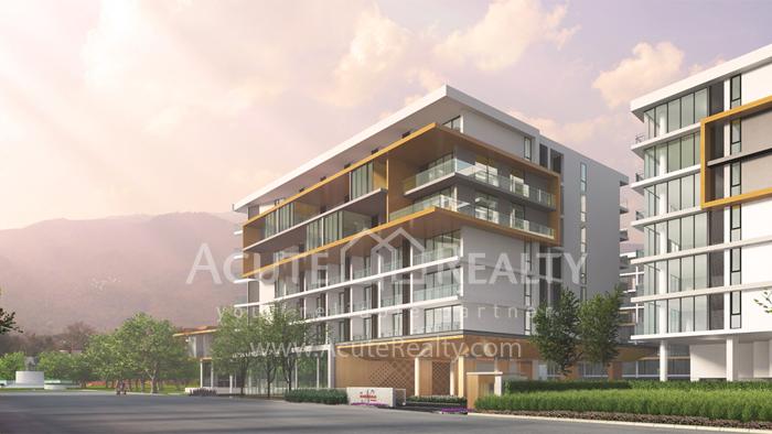 Condominium  for sale The Nimmana Nimman Road. image18