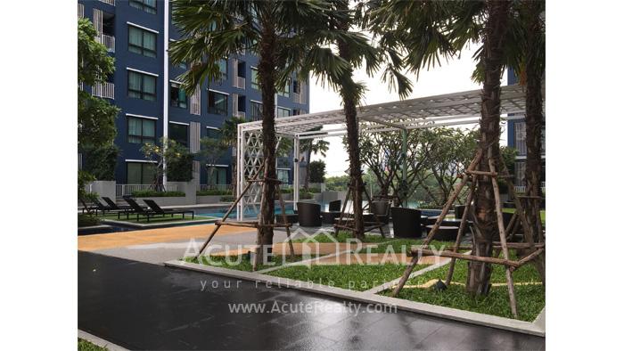 公寓  for sale Niche Mono Ratchavipha Ratchavipha image13