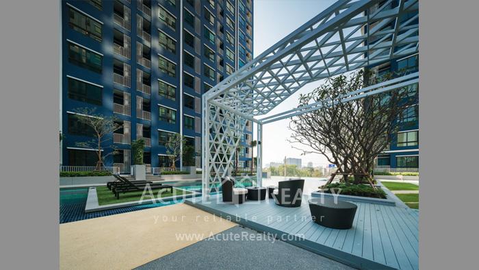 公寓  for sale Niche Mono Ratchavipha Ratchavipha image32